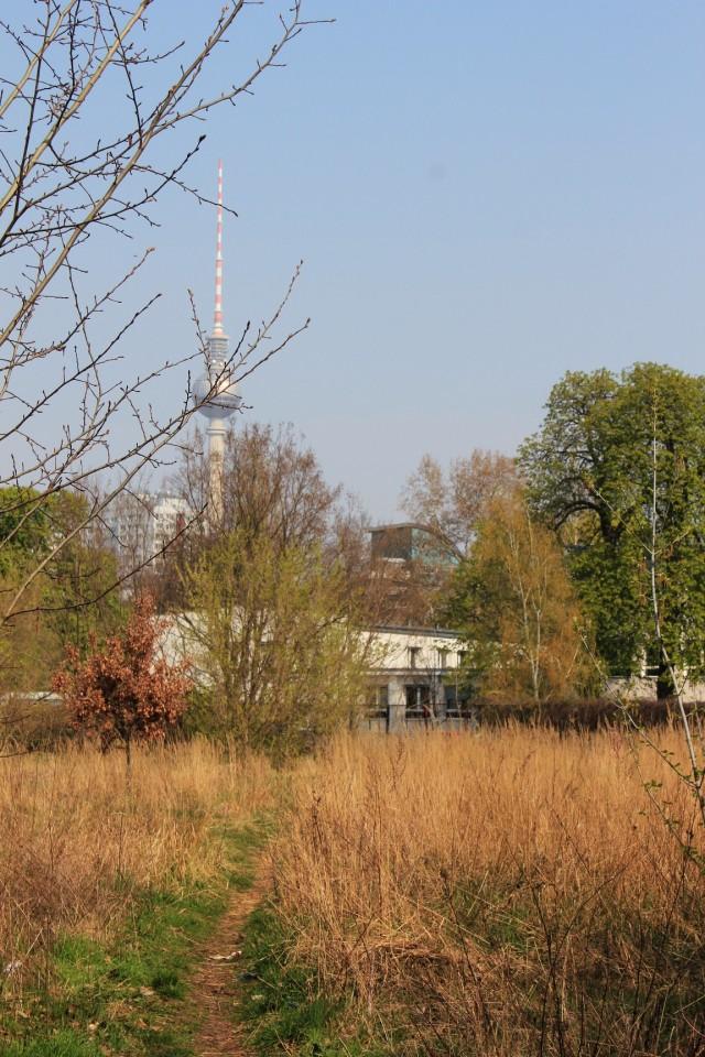 Mauerweg II
