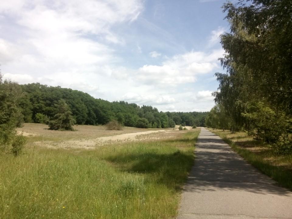 Mauerweg XXXIV